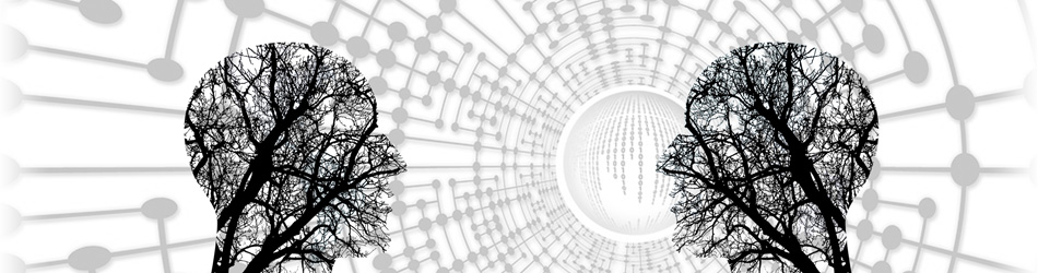 Siti internet e sviluppo web - UniMiB