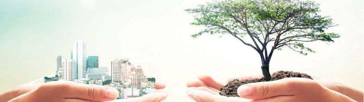 master sostenibilità